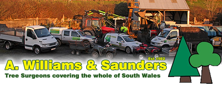 Tree Surgeons and Fire Wood suppliers - A Williams and Saunders