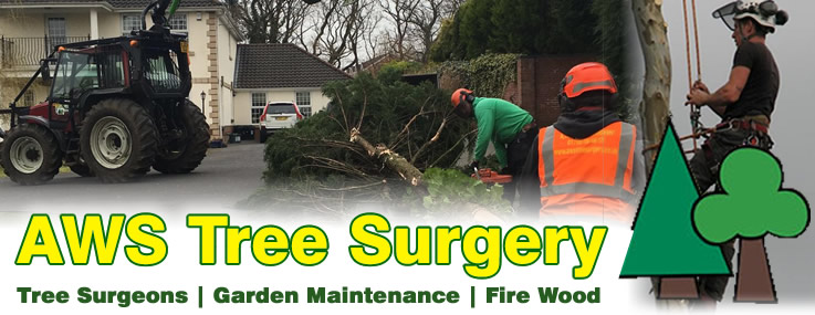 Tree Surgeons and Fire Wood suppliers - AWS Tree Surgery